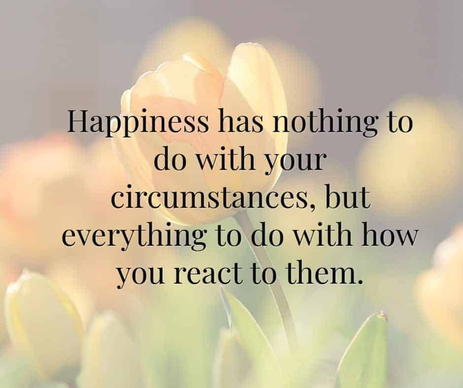 Happiness has nothing to do with your circumstances, but everything to do with how you react to them