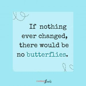 I nothing ever changed, there would be no butterflies.